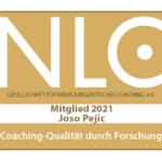 Peijc_ Joso_2021